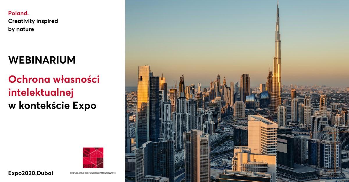 zaproszenie na webinarium, panorama miasta Dubai