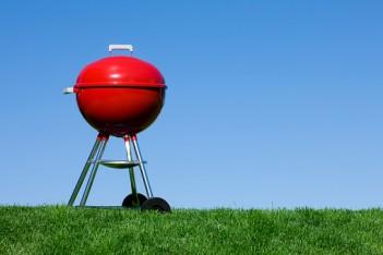 grill na trawie